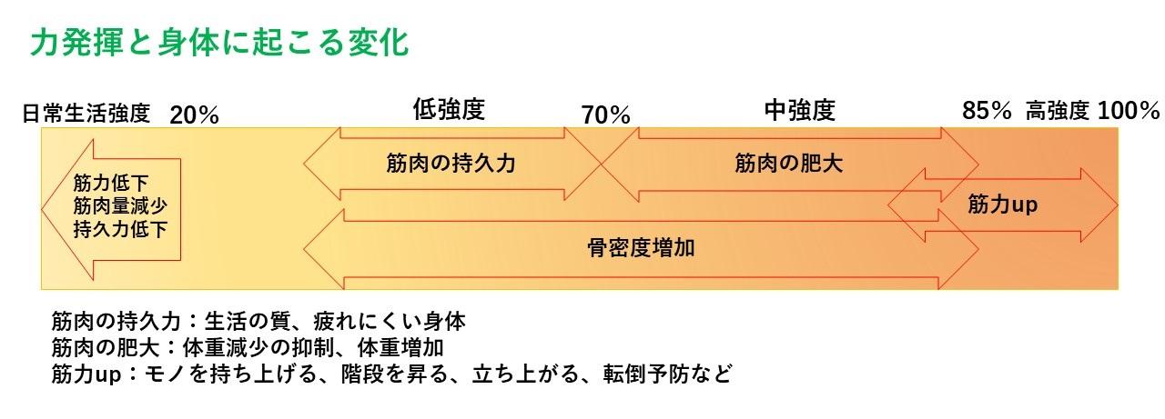 トレーニング強度と効果 図1
